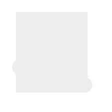 NanoFactor